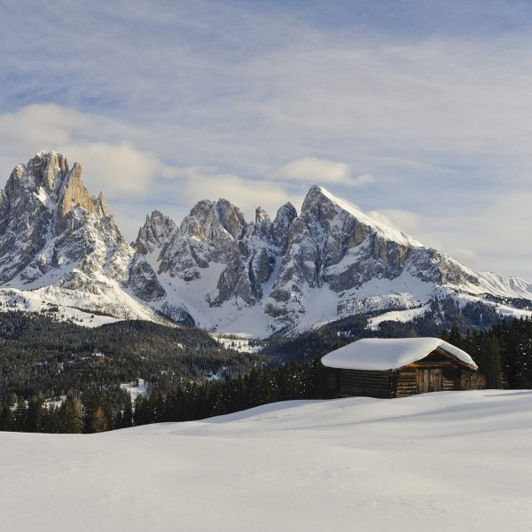 Mountains in winter with alpine hut panorama picture